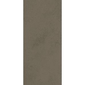 Lot de 2 panneaux muraux 100 x 210 cm, revêtement pour douche et salle de bains, DécoDesign DÉCOR, Schulte, Glaise