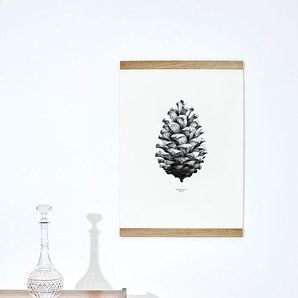 Paper Collective 1:1 Pine Cone Poster - blanc