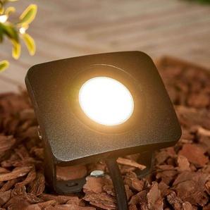 Spot sur piquet LED Duke en aluminium, 10W