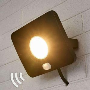 Projecteur dextérieur LED Duke, alu, capteur, 30W