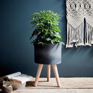 Cache-pot en pierre et bois H48xD31cm