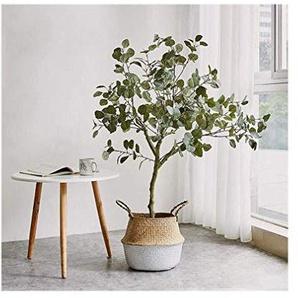 Exquis Non toxique arbustes artificiels, plantes dintérieur en pot et décoration Grand Bonsaï en plastique fleur Ornements for lintérieur dextérieur moderne Home Decor 121 (Size : Small)