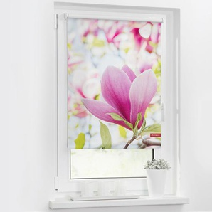 Store enrouleur magnolia