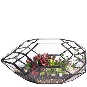 Fait à la main Grande irrégulières Polyédrique écran en verre géométrique Terrarium Lanterne Plante Pot de fleurs Rebord de fenêtre balcon de table Table Pot à nourriture 28cm de long