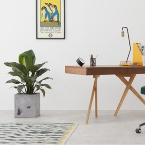 Hailey, chaise de bureau pivotante, noyer et velours vert sapin