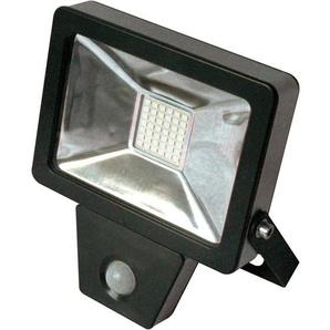 Projecteur plat à détection infra-rouge 50W - 4000 Lm - 6500K - IP65/IP44 - FOX LIGHT