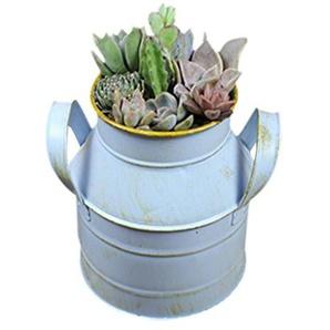 Bloomma Planteurs artificiels Pots de Fleurs en métal décoratif-galvanisé pichets arrosoirs Peuvent planteurs pour Mariage décor à la Maison
