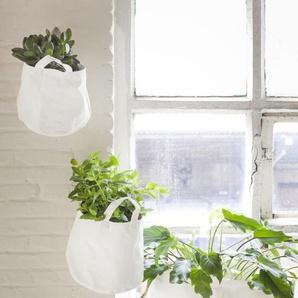 Serax Sac de plantes Canvas - Lot de 3