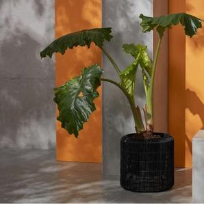 Nadda, lot de 2 piédestaux pour plantes rond sur pied en résine tressée, noir