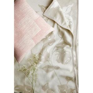 Plaid Soft Impression Soft Roses