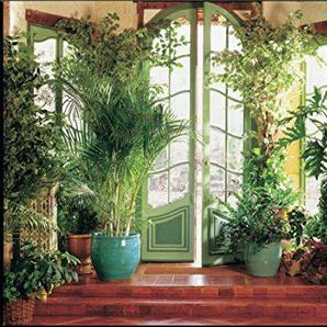 Papier Peint Photo Mural INTISSÉ-(300V)-JARDIN DHIVER-350x260 cm -7 lés 50x260 cm-Fleurs Jardin Nature Paysage-Salon Nursery Cuisine