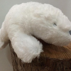 Ours polaire musical Ice blanc 29 cm
