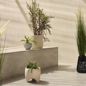 Nadda, lot de 2 piédestaux pour plantes sur pied en résine tressée, noir