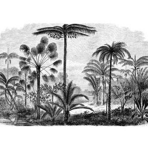 Papier peint Panoramique - Aladin