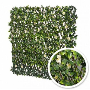 Treillis extensible feuilles de jasmin fleuri, Longueur 24 m, Hauteur 1 mvert - ATOUT LOISIR