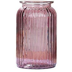 Chakil Grand Rayure Verre Vase Créatif Bouteille De Stockage Décoration Conteneur De Plantes Maison Mariage Jardin De Vase Size 11cm*18.5cm (Pourpre)