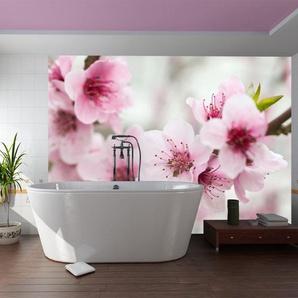 Papier peint - Cerisier en fleurs avec petites fleurs roses