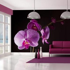 Papier peint - de bon goût orchidée