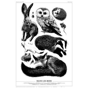 Affiche Art 50x70cm - Dans les bois  par Amandine Delaunay