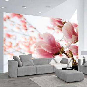 Papier peint - Magnolia rose