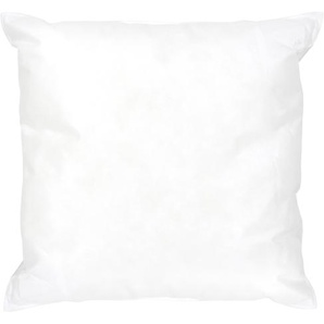 Coussin à recouvrir 40x40 cm garnissage Fibres polyester coussin Malin