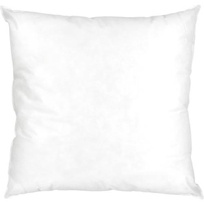 Coussin à recouvrir 65x65 cm garnissage Fibres polyester coussin Malin