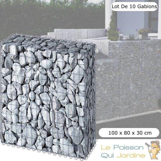 Lot de 10 Gabions En Métal Galvanisé, Robuste, Résistant, 100 x 80 x 30 cm - Acier - WWW.LEPOISSONQUIJARDINE.FR