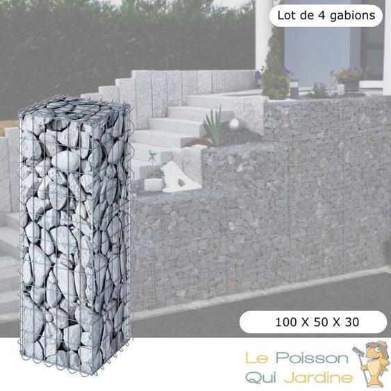 Lot De 4 Gabions En Métal Galvanisé - Robustes - Résistants - 100 x 50 x 30 cm - Acier - LE POISSON QUI JARDINE