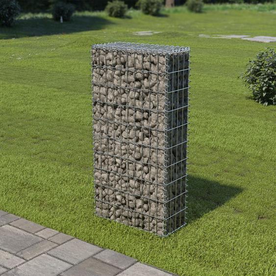 Mur en gabion avec couvercles Acier galvanisé 50 x 20 x 100 cm