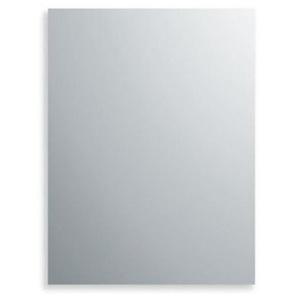 Plieger Miroir rectangulaire 5mm 110x70cm 0800123
