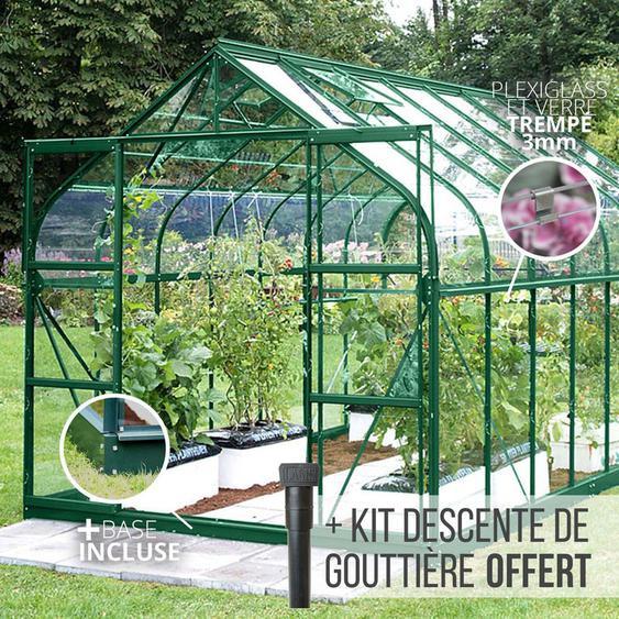 Serre en verre trempé 3 mm ALOE 11,45 m² - Verte - JARDIMAGINE